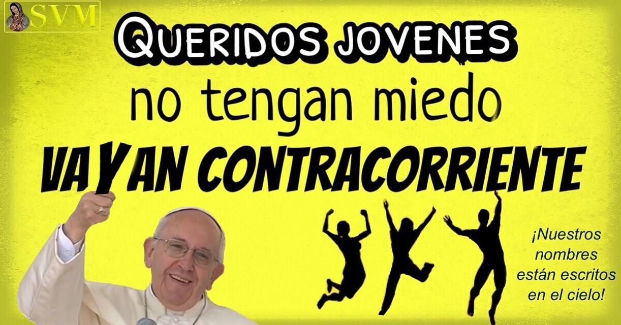 7 Estupendas Frases De Nuestro Papa Franciscomensajefotos