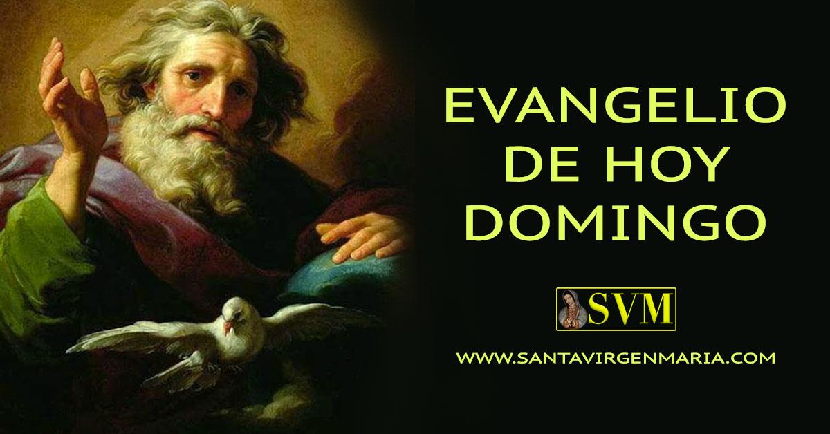 Evangelio San Juan 15 18-21 CATOLICO