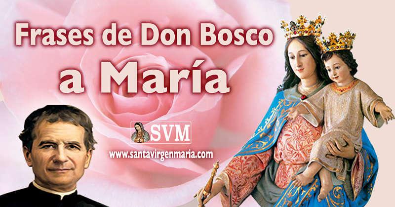 Las Frases De Don Bosco A Maria Auxiliadora 24 De Mayo