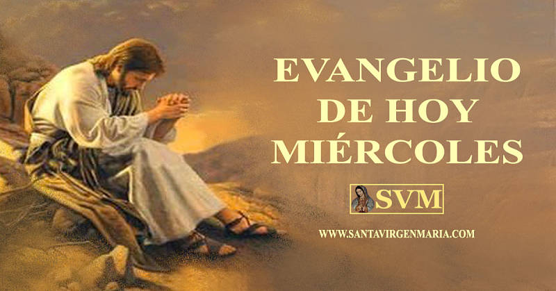 Evangelio San Juan 17 11b-19 CATOLICO