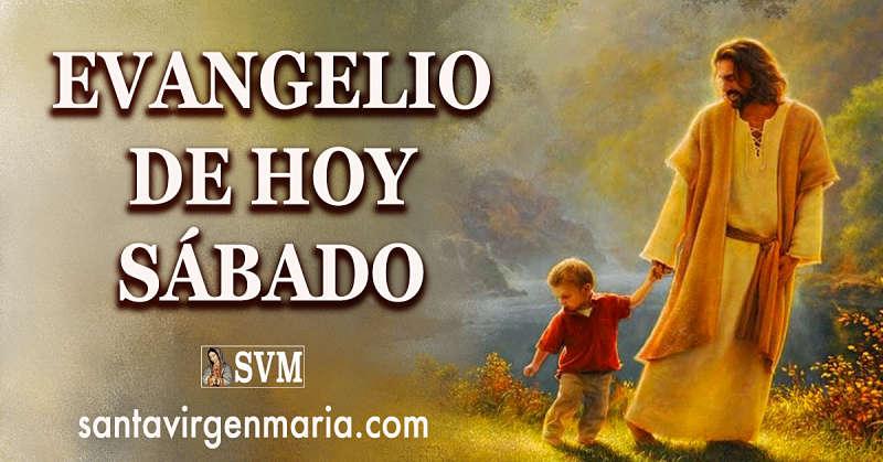 Evangelio San Mateo 6 24-34 CATOLICO
