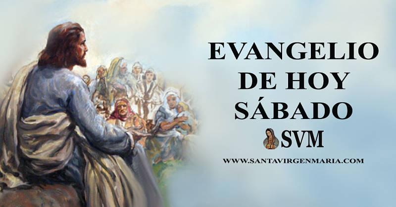Evangelio San Mateo 12 14-21 CATOLICO