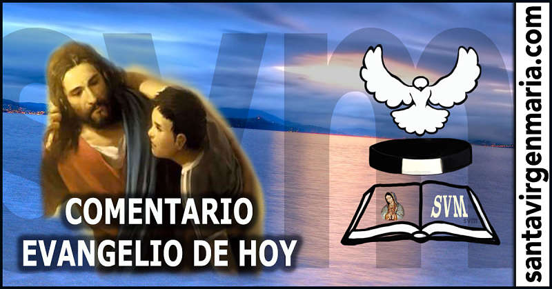 COMENTARIO DEL EVANGELIO 14 julio 2016