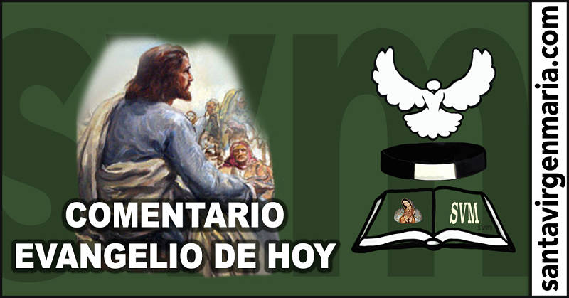 COMENTARIO DEL EVANGELIO 16 julio 2016