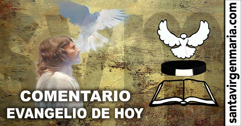 COMENTARIO DEL EVANGELIO 8 Julio 2016