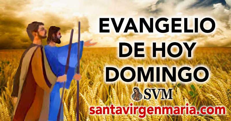 evangelio-san-lucas-10-1-12-17-20-catolico