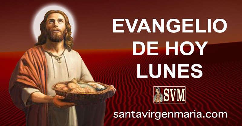 Evangelio San Mateo 14 13-21 CATOLICO