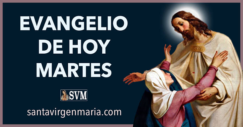 Evangelio San Mateo 12 46-50 CATOLICO