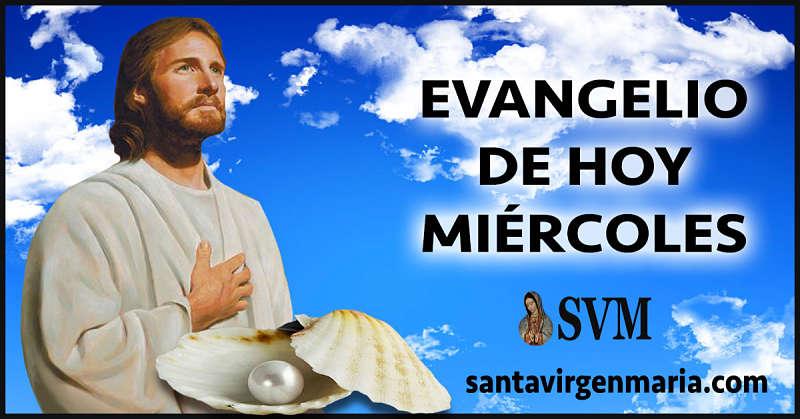 Evangelio San Mateo 13 44-46 CATOLICO