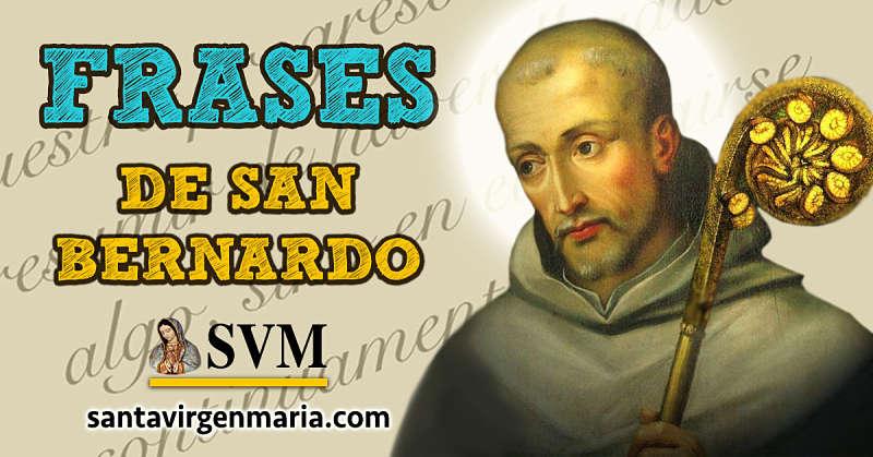 12 frases de San Bernardo