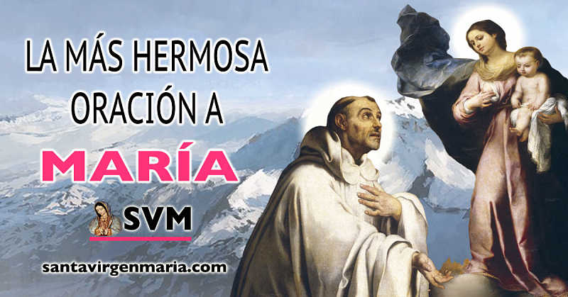 La oración de San Bernardo a nuestra Santa Madre
