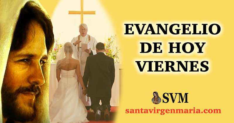 Evangelio San Mateo 19 3-12 CATOLICO