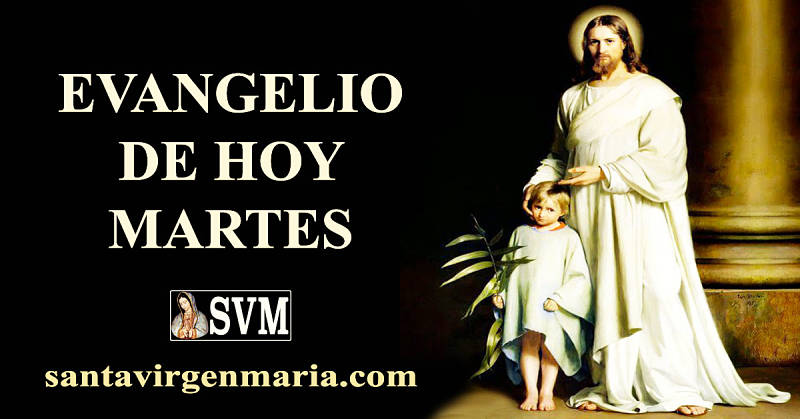 Evangelio San Mateo 18 1-5 10 12-14 CATOLICO
