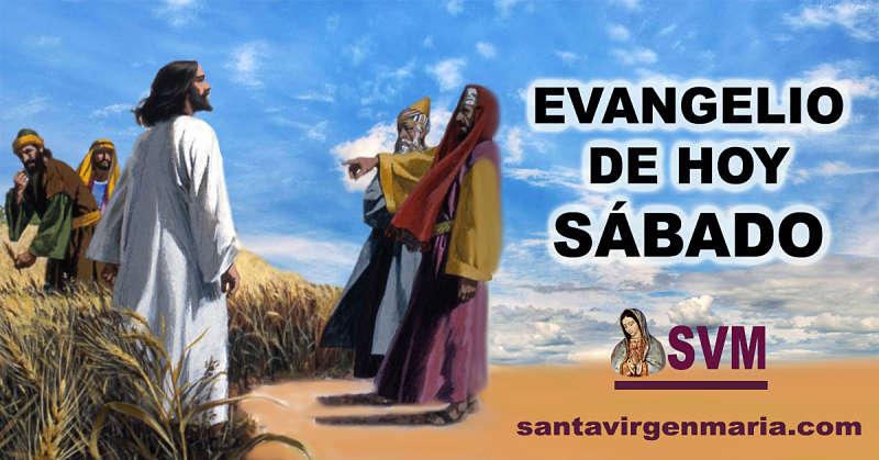 Evangelio según San Lucas 6 1-5 CATOLICO