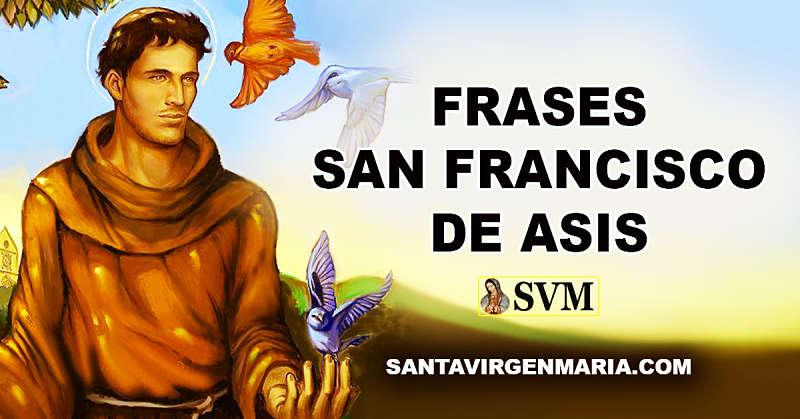 Frases De San Francisco De Asis Fiesta 4 Octubre