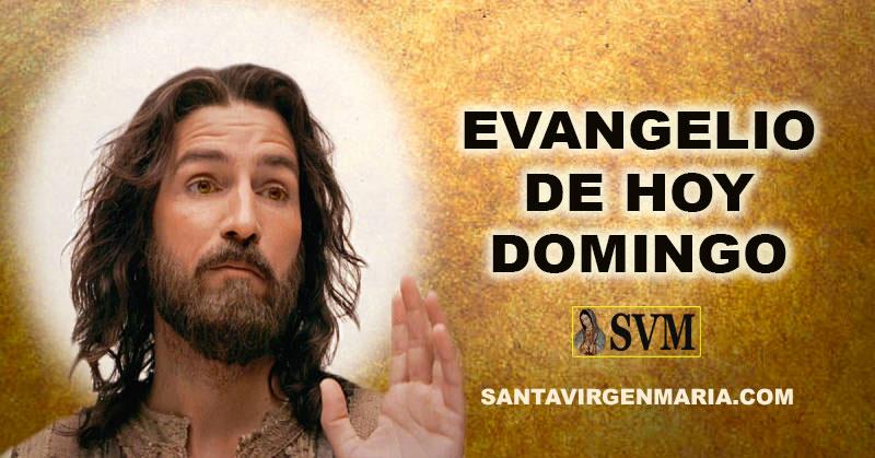 Evangelio Según San Marcos 121 28 Catolico Palabra De Dios